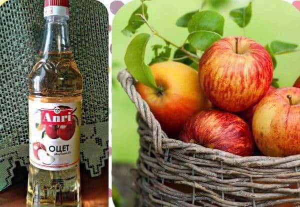 Органический яблочный уксус