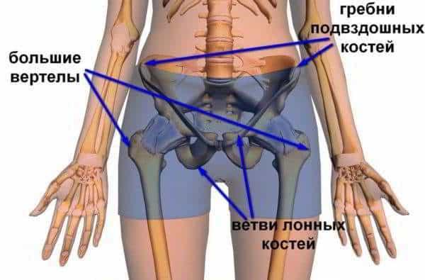 Изображение - Щелкают суставы локтей Hrust_v_tazobedrennom_sustave_3-e1509181829457-600x395