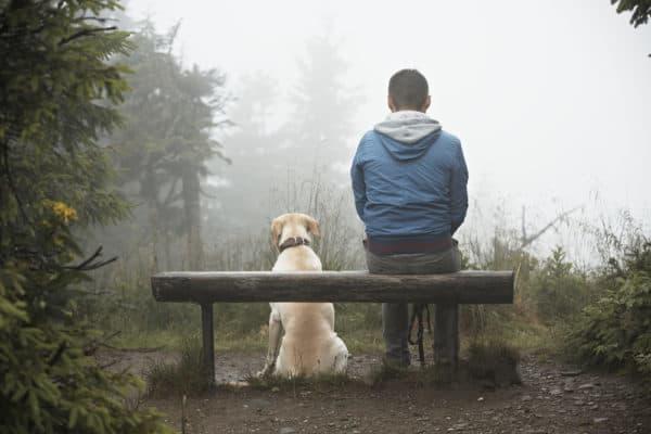 Дождь - влияет ли погода на артрит