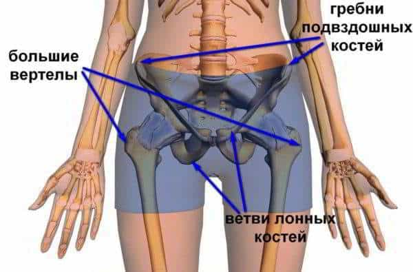 Изображение - Хрустит нога в тазобедренном суставе hrust_v_tazobedrennom_sustave_1-600x395