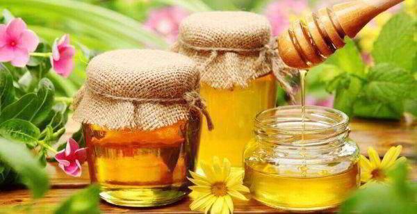 Полезные свойства меда для хрящей и суставов